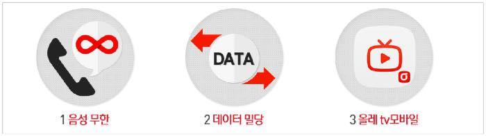 kt, 올레, 데이터 선택 요금제, 무제한 요금제, 주의, 내용