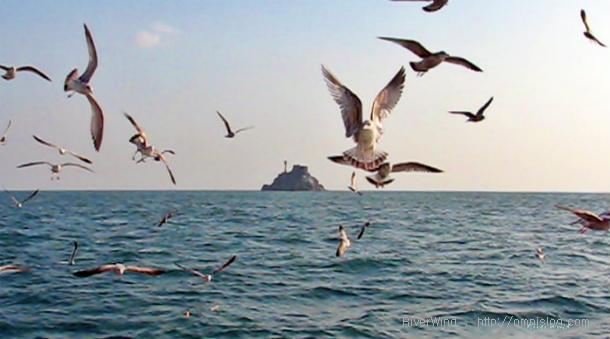 바다관광 태종대-주전자섬