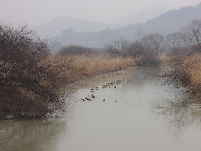 김해화포천습지 화포천 습지 생태공원
