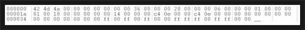 24 bit BMP - hex editor로 열기