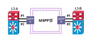 MSPP LLCF