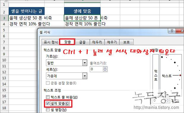 엑셀 Excel 텍스트 셀에 맞춰서 넣는 방법, 글자가 셀을 넘어갈 때