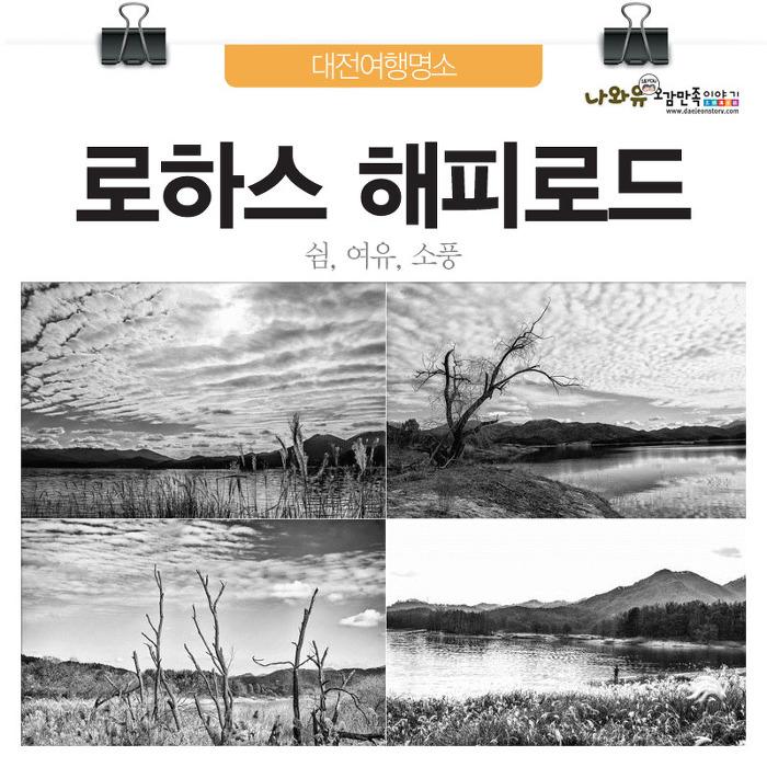 대전여행명소 로하스해피로드