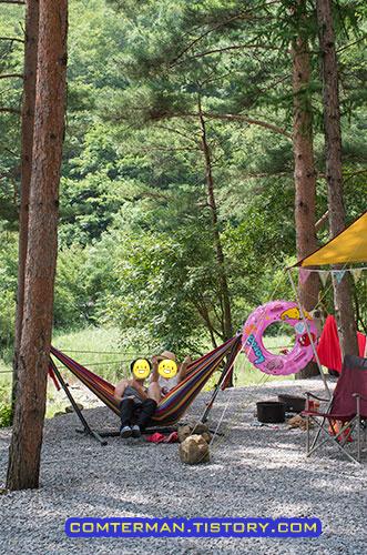 영월 사랑나무 캠핑장