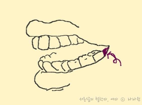 치아 그림