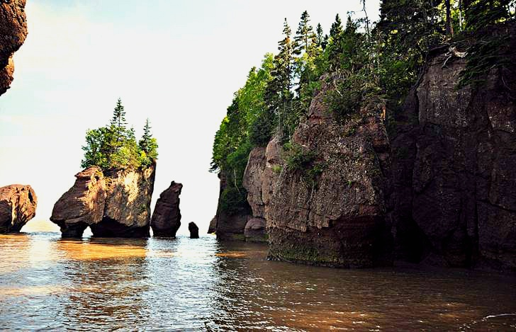 뉴 브런즈윅의 코끼리 바위입니다