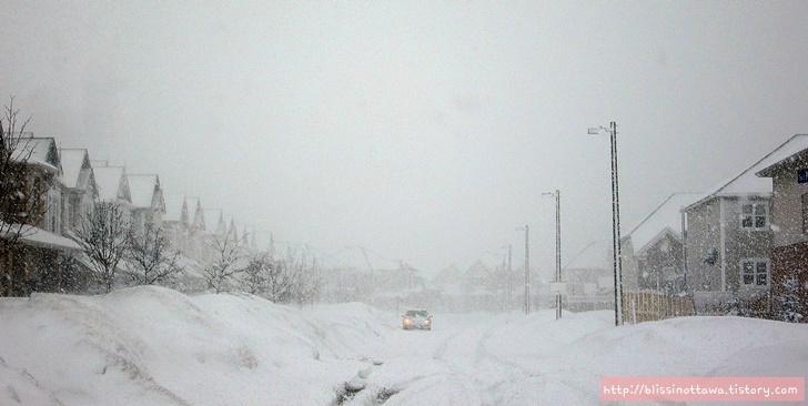 캐나다 겨울 월동준비