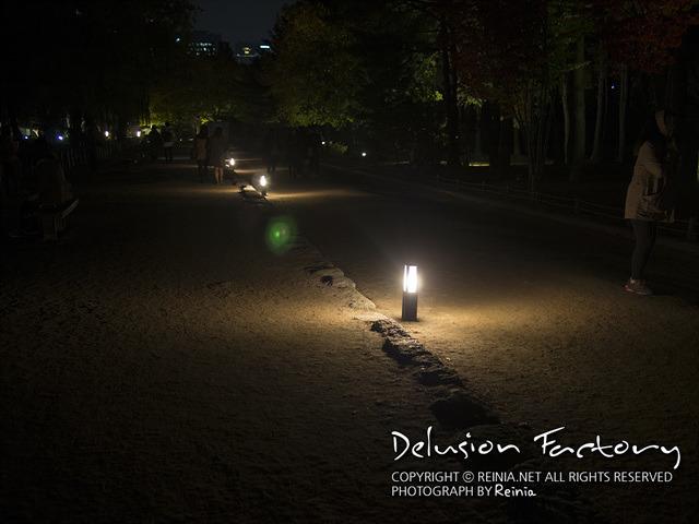 경복궁의 밤 사진