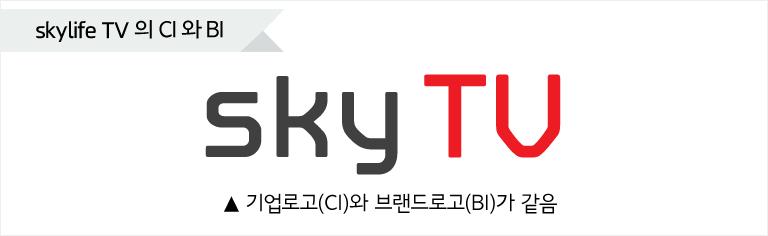 스카이라이프TV BI와 CI소개