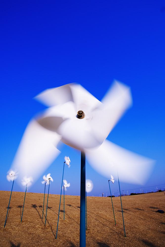 파란하늘에 하얀 바람개비가 힘차게 돌아가고있다.