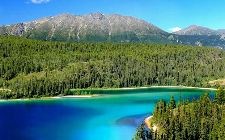 캐나다는 세계에서 가장 긴 해안선을 가지고 있습니다.