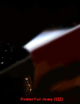 HID 램프등 자동차 불법구조변경 일제단속