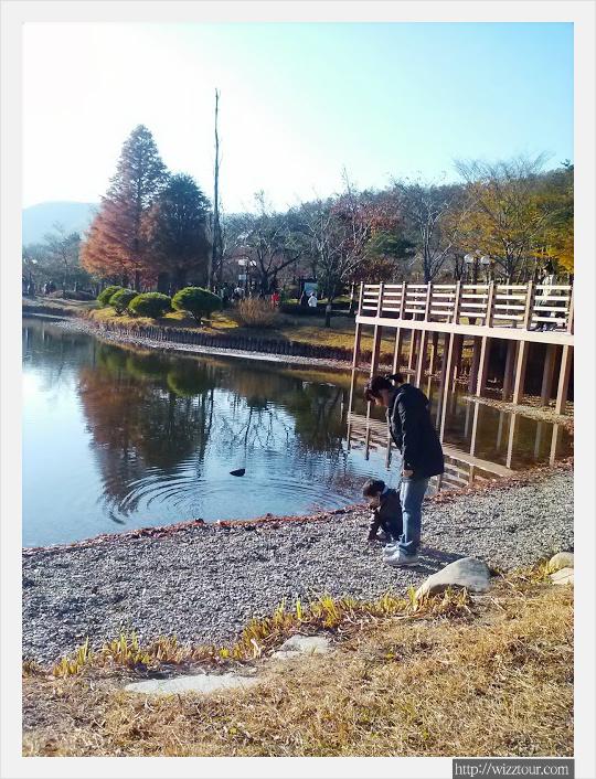 경북 수목원 호수 wizztour.com
