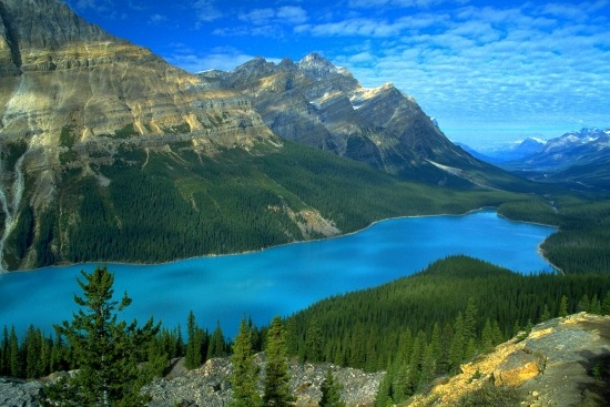 Image result for 세계에서 가장 아름다운 녹색 자연