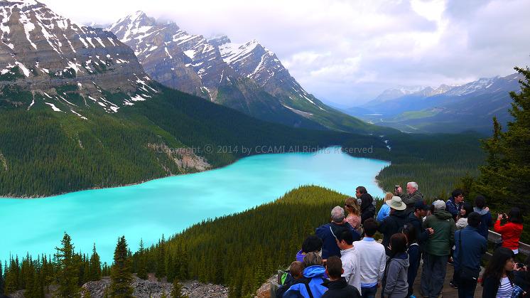 Canada, Peyto Lake, Rocky mountains, Vancouver, 로키산맥, 벤쿠버, 앨버타 주, 에메랄드, 캐나다, 페이토 호수, 해외여행