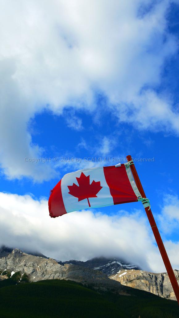 Canada, Lake Louise, Rocky mountains, 로키산맥, 록키 산맥, 루이스 호수, 밴프, 알버타, 에메랄드, 여행, 캐나다, 캐나다 여행, 해외여행, 호수 루이스