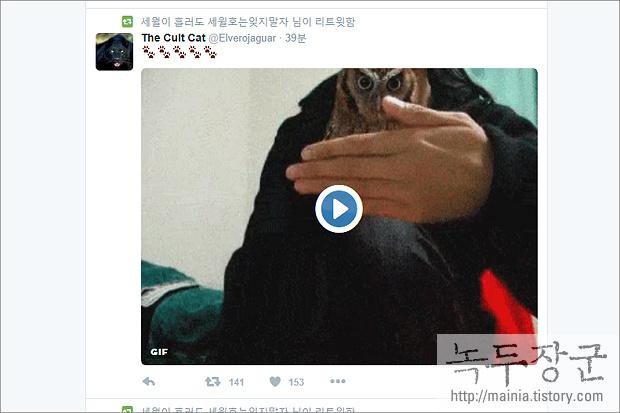 트위터 Twitter 트윗 글 중에서 동영상 자동 재생 막는 방법