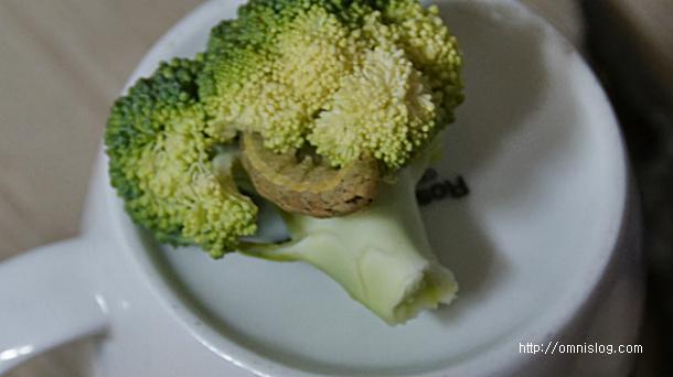 브로콜리와 함께 따라온 단백질덩어리
