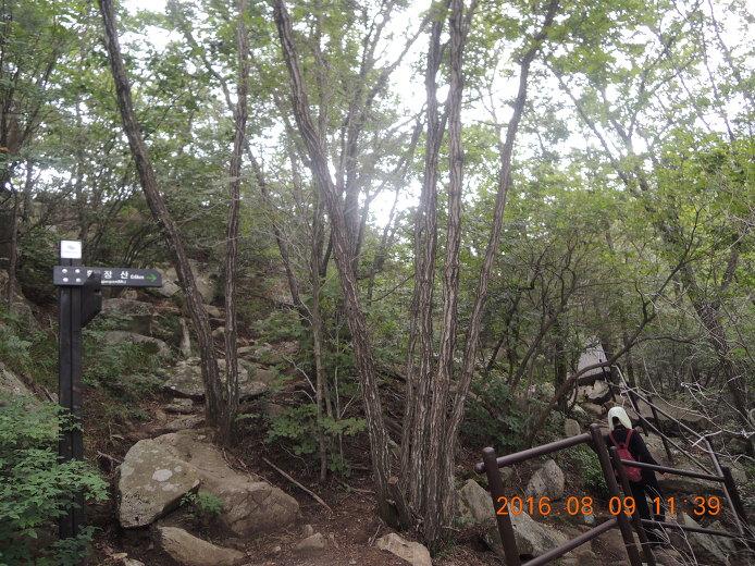 황장산 등산코스