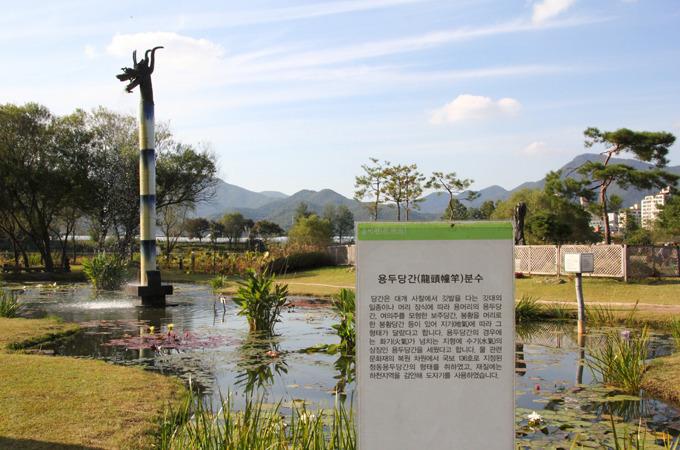 세미원 열대수련연못
