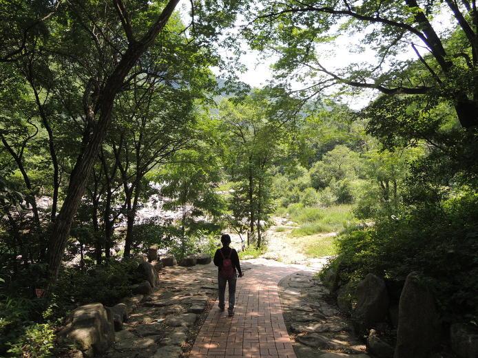 양구 볼거리 관광지 두타연