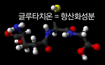 [사진] 글루타치온 = 항산화 성분