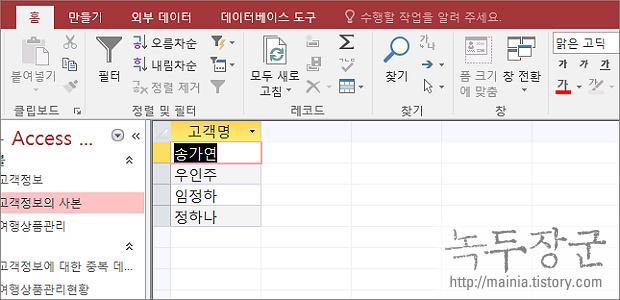 엑세스 Access 동일한 필드의 개수를 셀 수 있는 SQL 문 만들기