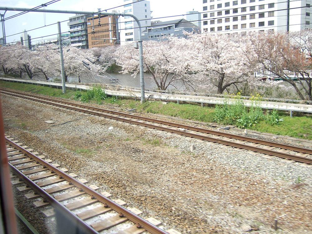 일본여행 - 그 다음 다음 다음의 이야기.. : 274DB14D513CBABA3367F4