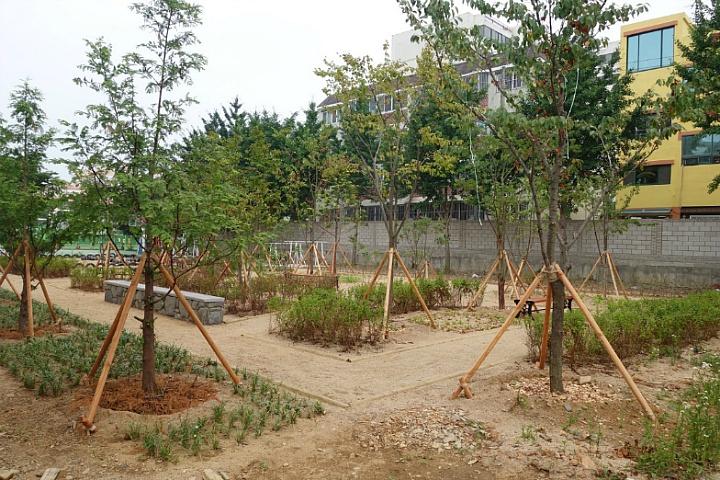 영천고등학교 학교숲 모퉁이숲
