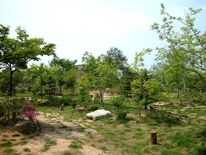 홍청번보과학고등학교 학교숲 야외숲