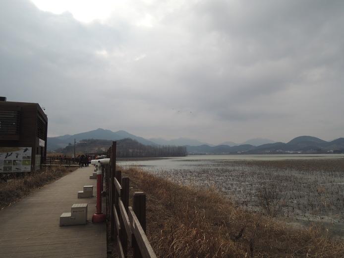 창원 추천 겨울여행지 주남저수지