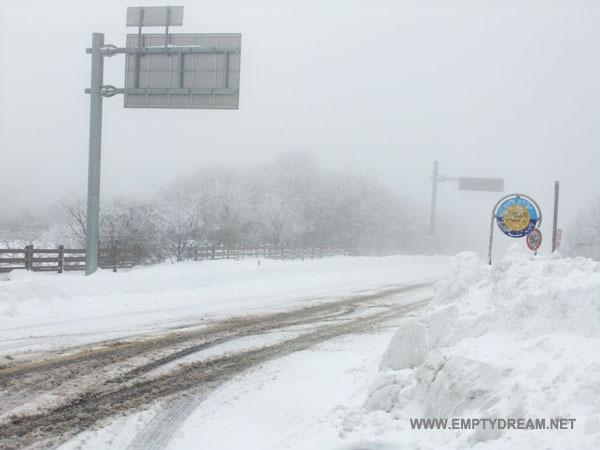 겨울 한라산 설경을 편하게 즐기려면 - 한라산 1100 고지 휴게소 & 습지