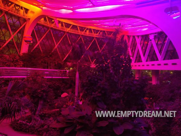 서울식물원 온실 야간 특별관람, 윈터가든 페스티벌, 크리스마스 연말 특별 이벤트