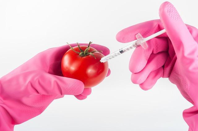 GMO(유전자조작)식품 부작용과 구매시 주의사항 [GMO 유전자변형 식품 피하는 방법] 호르몬 불균형 ㅣ GMO 식품 반대