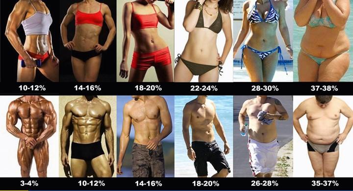 비만도계산기와 BMI지수계산법6