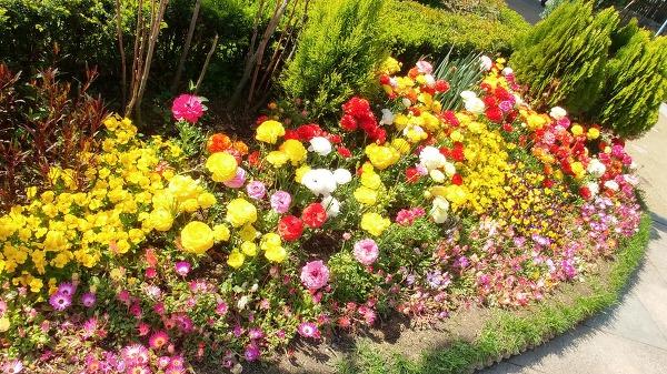 인천 자유공원18