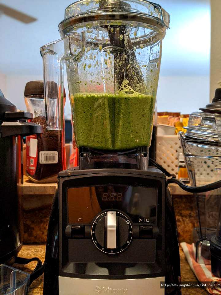 Vitamix 믹서기로 건강한 아침 주스 '시금치 주스' 맛있게 만들어 먹기