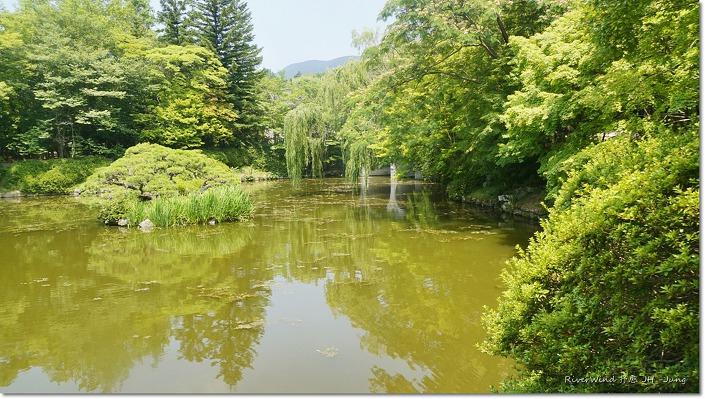 불국사 입구 연못
