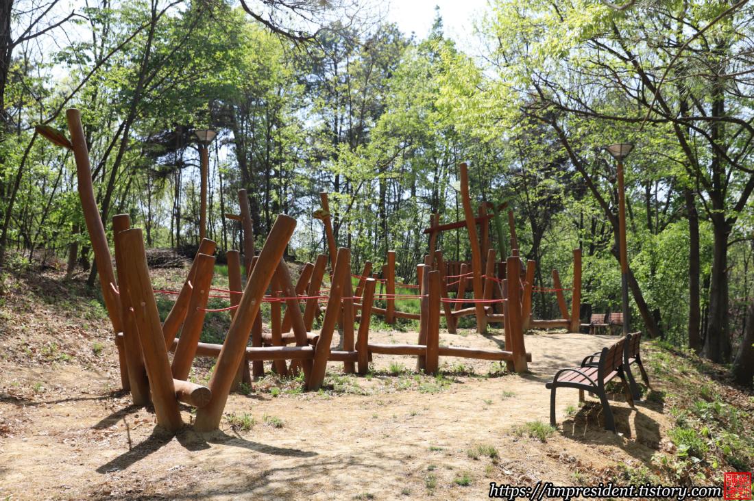 솔빛숲유치원5