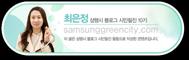 삼성전자 시민필진 최은정