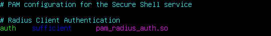 auth  sufficient   pam_radius_auth.so