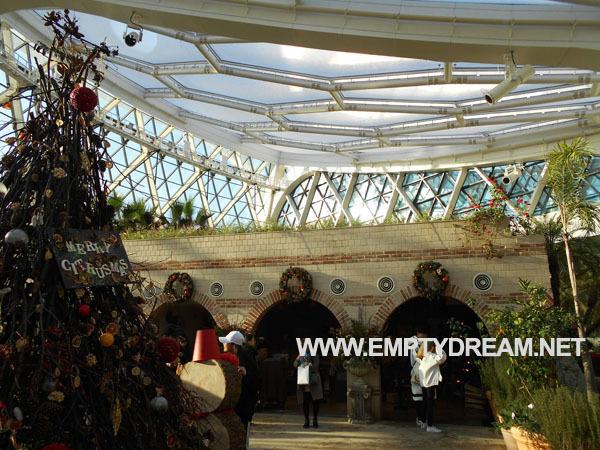마곡 서울식물원 주제원 식물문화센터 온실 지중해관