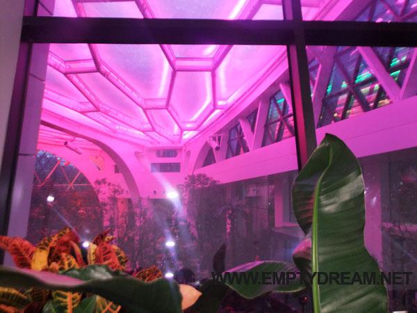 서울식물원 식물문화센터 공간과 카페