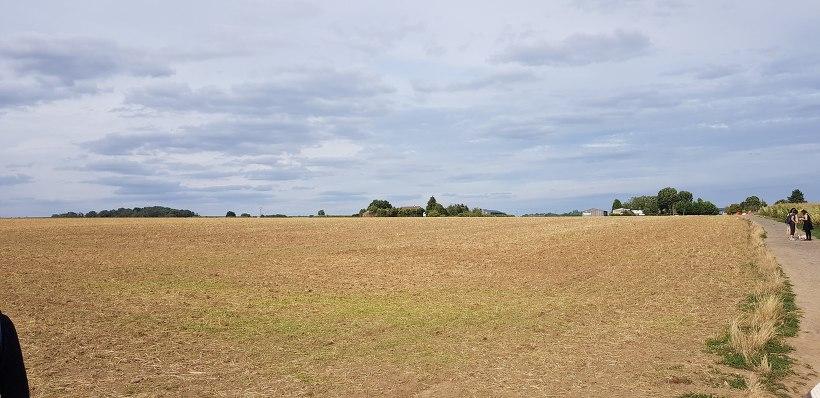 고흐마을 오베르 쉬르 우아즈 - 밀밭