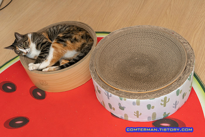 자작 캣보울 스크래처 고양이