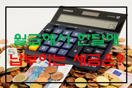 월급에서 한 달에 납부하는 세금