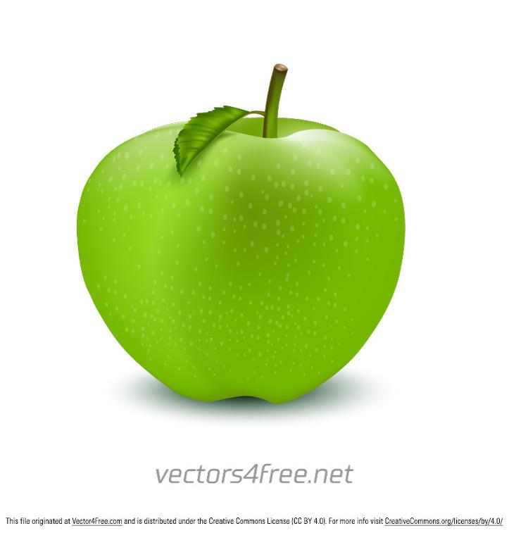 Vector For Mac