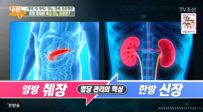 현대판 전염병! 당뇨잡는 여주의 효능과 부작용 [내 몸 사용설명서 / 여주 먹는법] 혈당 관리의 핵심 장기 췌장과 신장