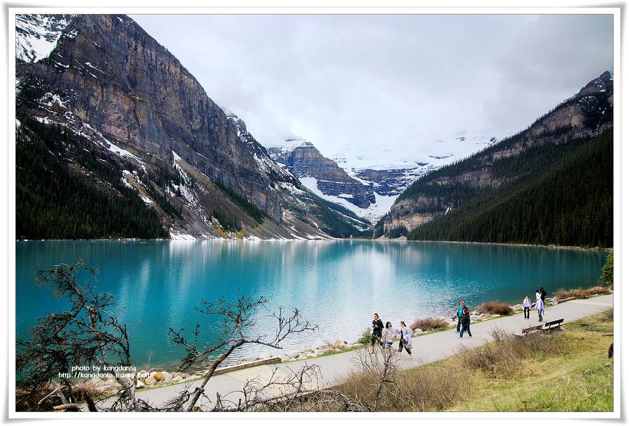 로키(Rokies)의 빙하산과 침엽수의 절경, 캐나다 레이크 루이스(Lake Louise)