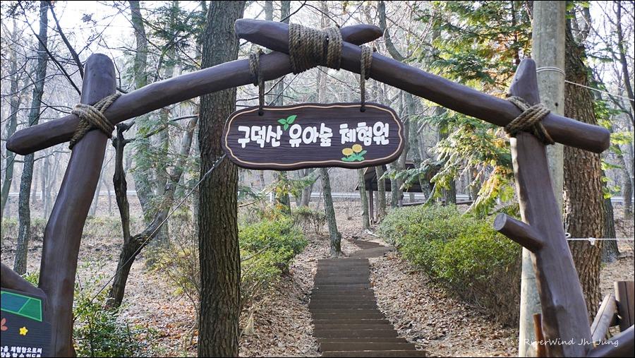 구덕산유아숲